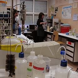 En el antiguo laboratorio